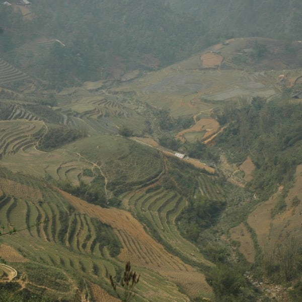 View over rice paddies near Sapa